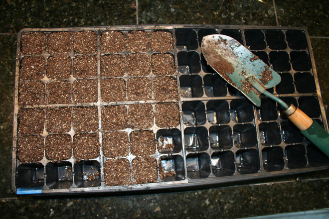 seedstarting_new06